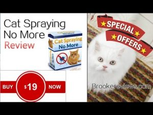 cat spraying no more PDF